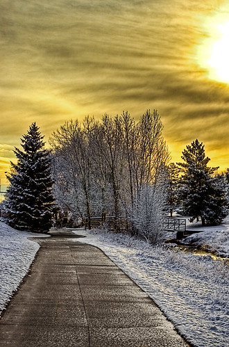 trees nature clouds sunrise canon landscape vanishingpoint colorado scenic kitlens 1855 canon1855 blueribbonwinner canonefs1855mmf3556 xti 400d canon400d canonxti aplusphoto platinumheartaward naturethroughthelens joorgawt