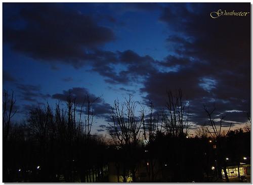 blue trees sunset sky milan alberi clouds lights evening tramonto nuvole blu milano cielo luci sera silhouttes ghostbuster gigi49 sottoilcielodimilano
