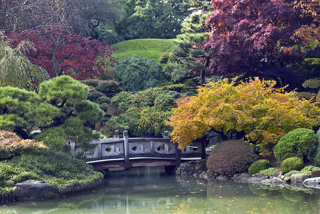 Japanese garden in fall at brooklyn botanic garden for Jardin new york