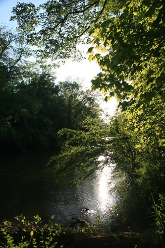 sunset sunlight nature water river georgia stream athens oconeeriver athensga georgiastatebotanicalgardens