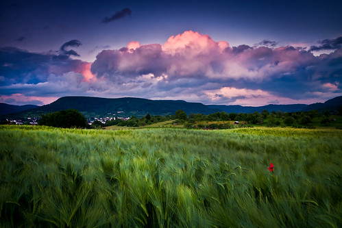 sunset day cloudy landschaftnaturhimmelsonnenuntergangsunsetcloudscokingrauverlaufabendreutlingenpfullingenfeldmohn