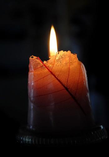 Burning leaf by Amy Bailey