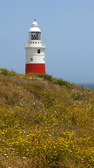 Lighthouse on Europa point