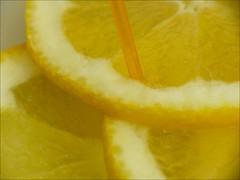 honeydew(0.0), plant(0.0), ananas(0.0), citrus(1.0), orange(1.0), lemon(1.0), yellow(1.0), yuzu(1.0), produce(1.0), fruit(1.0), food(1.0), citron(1.0),