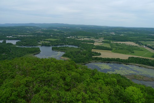 new york school trees house mountain weeds hiking exploring haunted lx3