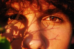 Closeup of boy with tree shadows on face