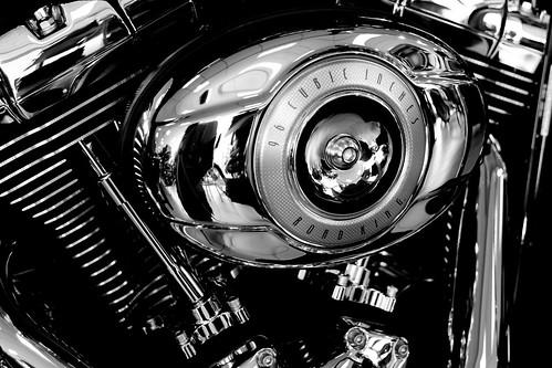 Harley Davidson 018