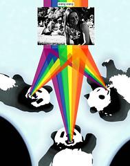 Precog Pandas