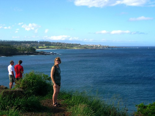maui, hawaii, vacation, tropical, island, w… IMG_1668