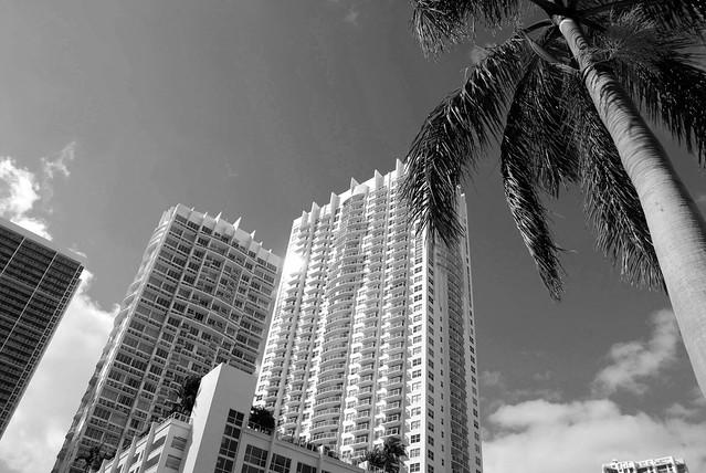 Miami Beach Hyatt Regency