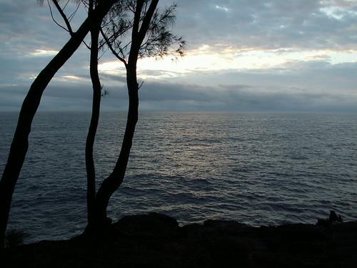 continentoceania countryunitedstates hawaiibigisland kaueleau sunrise tagged statesushawaii staterecreationareaushimackenzie year2009