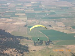 adventure, paragliding, parachute, field, air sports, sports, plain, windsports, extreme sport, aerial photography, flight,