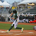 Oregon Ducks Baseball - Aaron Payne