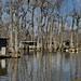 09-02-10 Swamp tour