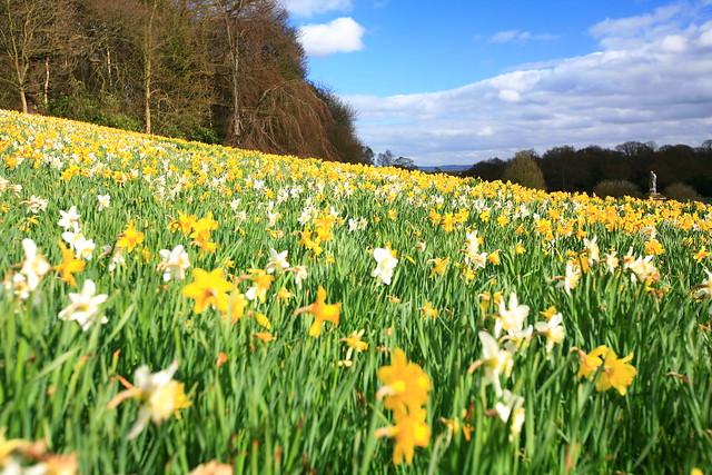 English countryside scenery - Flickr CC laszlo-photo