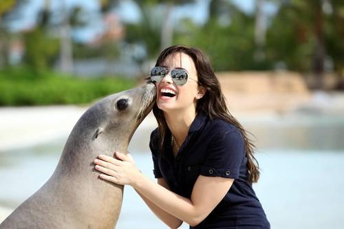 Demi Lovato Paradise Island