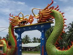 dragon, amusement ride, amusement park,