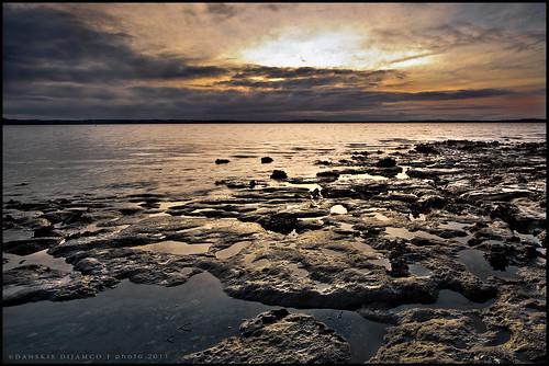 longexposure sunset sea newzealand sun shells reflection water clouds nikon rocks moody auckland nd lowtide ptchevalier ptchev aucklandnewzealand d700 nikond700 coylepark danskie danskiedijamco nikon1635mmf4ifgvrii sunsetatptchevalier sunsetatcoylepark coyleparkauckland