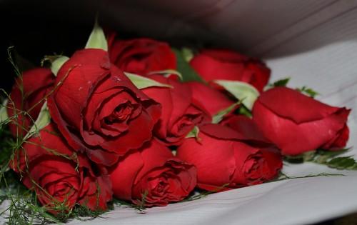 bouquet by NotT00Shabby