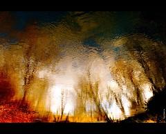 Brightness from my magic river...!!!