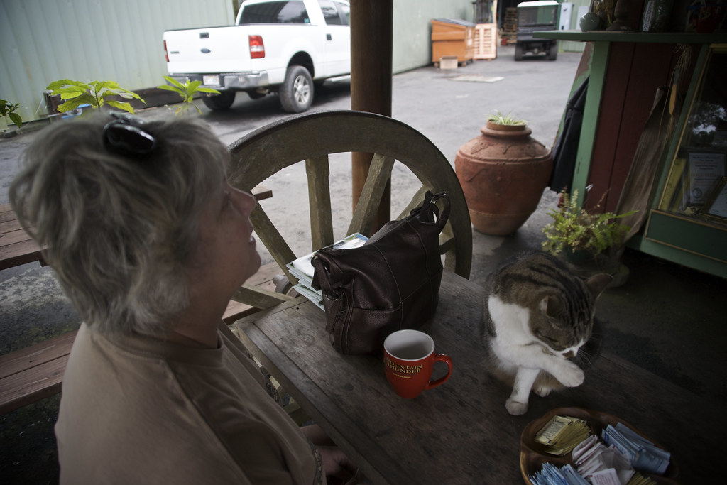 Mom and Cat with Coffee