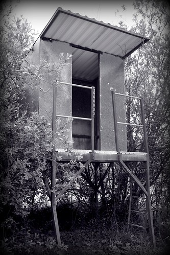 Par China Clay depot, abandoned inspection tower. by Claire Stocker (Stocker Images)