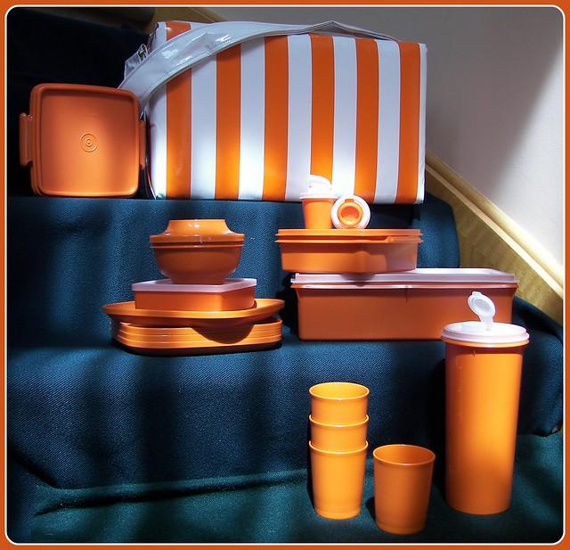 Tupperware Picnic Set
