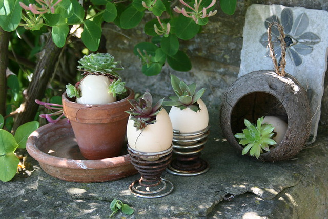 Egglings, a novel garden idea