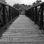 Bridge Overlooking Great Falls
