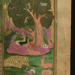 Illuminated Manuscript, Collection of poems (masnavi), Majnūn in the company of animals in the wilderness, Walters Art Museum Ms. W.626, fol. 266b