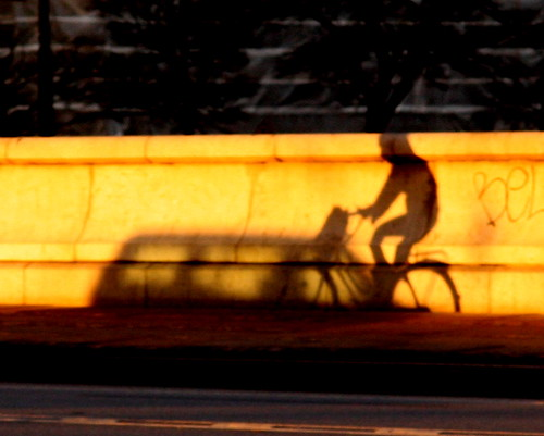 Cyclist Shadow