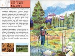 Landscape Observatories - Lifeway Trail