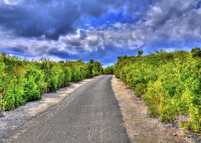 The Top 5 Things to do in the Bahamas - Nature Walk, Half Moon Cay