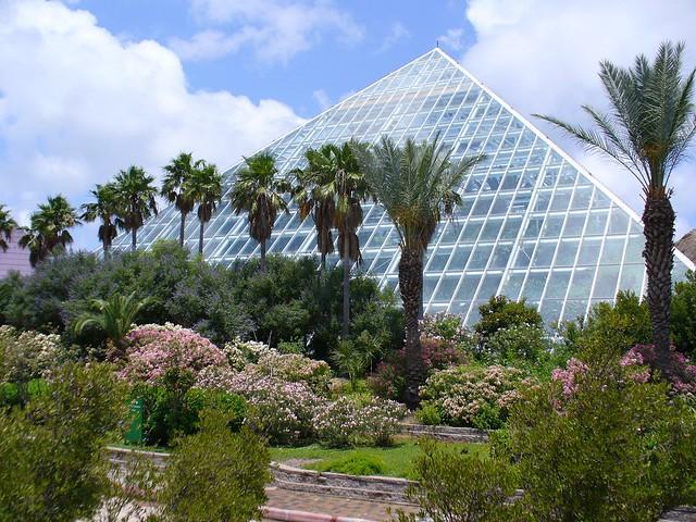 Moody Gardens Scenes From Moody Gardens Galveston
