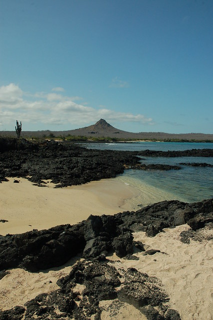 Exploring the Galapagos Islands: How a Dream Became a Reality