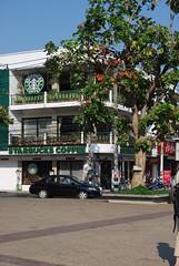 Starbucks Chiang Mai