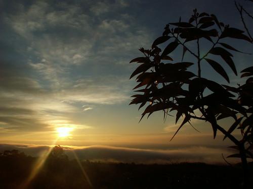 continentoceania countryunitedstates hawaiibigisland volcano moanaloaroadlookout sunrise unesco tagged statesushawaii nationalparkushihawaiivolcanoes year2009