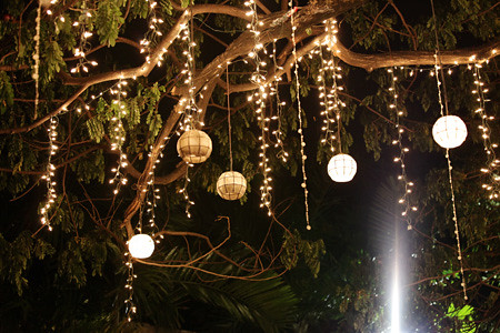 How Do I String Lights On A Christmas Tree : Capiz lanterns hanging on the tree. Flickr - Photo Sharing!
