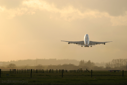 Commercial airliner taking off
