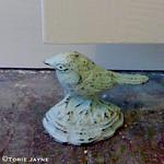bird door stop