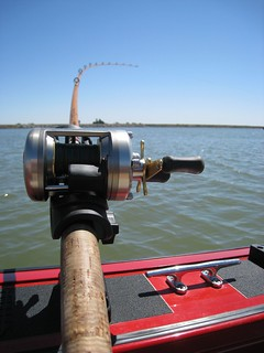 Trolling for Stripers