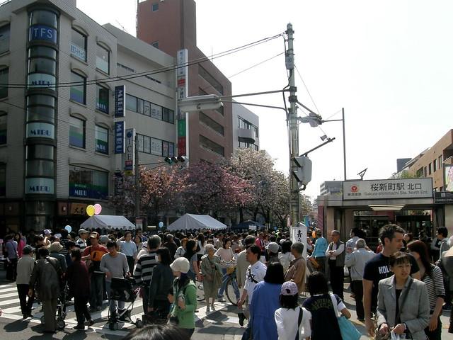 #2840 Sakura Matsuri (桜祭)