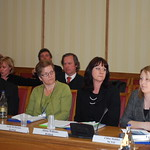 Information Committee hears from voluntary sector