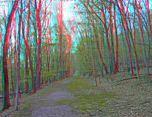 west virginia stereogram 3d anaglyph falls stereo wv valley