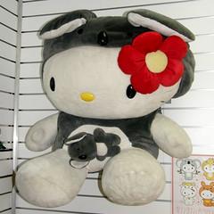 #9785 Hello Kitty, koala version