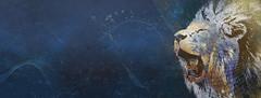 Fedora Leonidas - Dual Screen - king_4070x1536