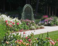 The Mount Flower Garden 5 by David Dashiell.jpg