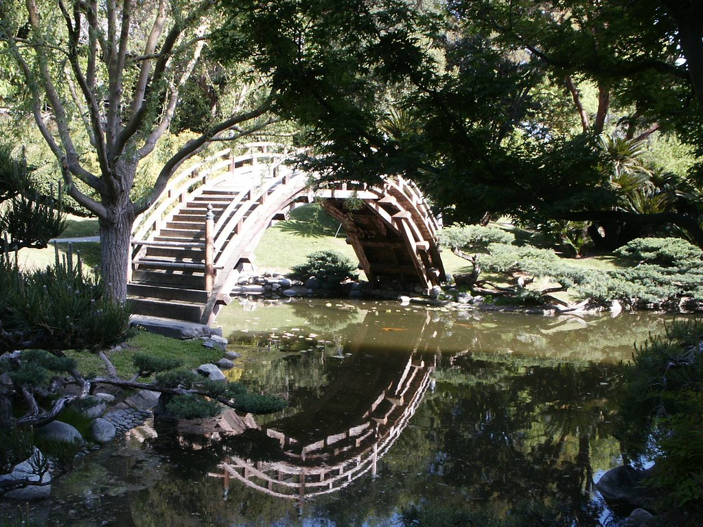 huntington library japanese garden bridge and koi pond in