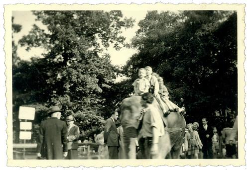 Children on an elephant 04