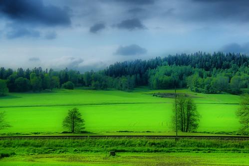 green fields hdr åker grönt kinnahult hdrterrorist harpebo peternyhlen